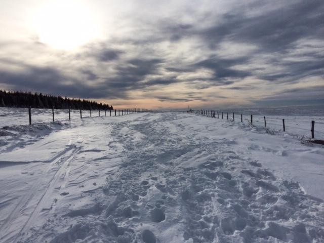 Route de montagne bloquée par la neige.